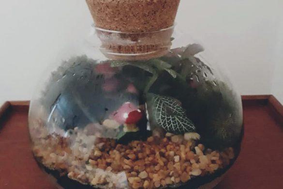 Terrácio fechado em vidro importado, composto por musgos e fitonias, para interior.